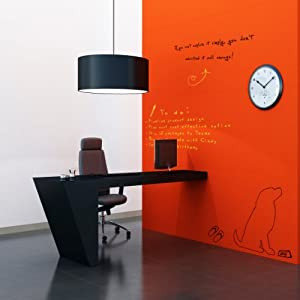 whitey board dry erase paint dry erase boards office products. Black Bedroom Furniture Sets. Home Design Ideas