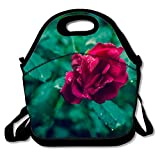 Classic Rose Deap Lunchbox Handbag - Easy to Carry to School, Office, Picnic