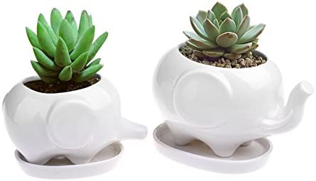 Pack of 2 Ceramic Planter Tiny Flower Plant Container Pot with Saucer Tray Home Office Desktop Elephant