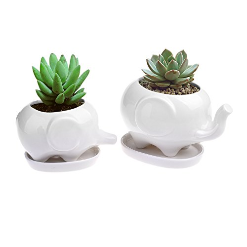 Pack of 2 Ceramic Planter Tiny Flower Plant Container Pot with Saucer Tray Home Office Desktop (Elephant)