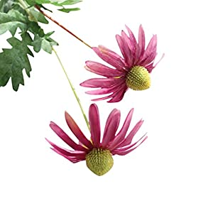 Leegor 1 Bouquet 2 Heads Real Touch Artificial Aster Chrysanthemum Fake Flowers Simulation Floral Home Wedding Decor Hotel Party Event Decorations Photography Show Props (red) 109