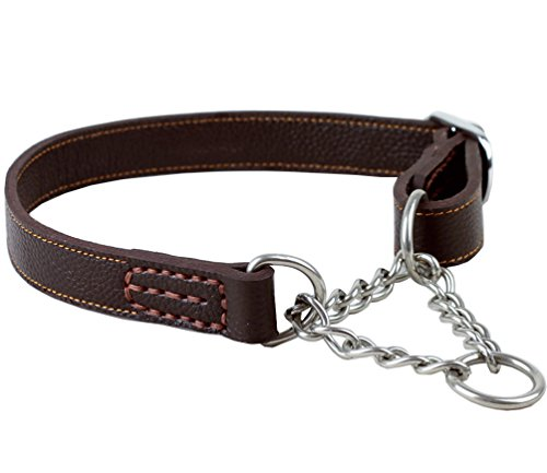 Tellpet Leather Dog Martingale Choke Collar, Brown, Large