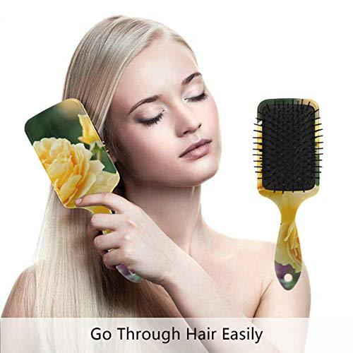 (Detangling-Hairbrush, David Austin Roses Boar bristle Hair Brushes with Nylon Ball-tipped & Air Cushion Plastic Comb for Anti Static & Frizz,Womens/Girls Hair)