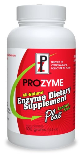 PZ Prozyme Plus All-Natural Enzyme Supplement, Lactose Free 300 gram