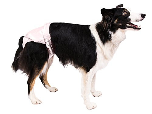 Pooch Pads PPME01PK Pink PoochPants Diaper, Medium/15 to 32 ()