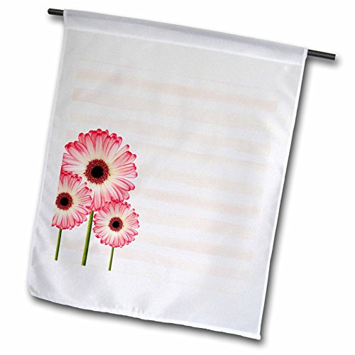 TNMGraphics Floral - Candy Pink Stripes With Three Pink Flowers - 12 x 18 inch Garden Flag (Candy Stripe Photo)