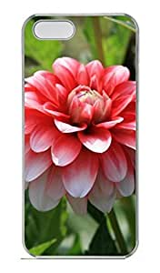 Red Flowers 5 Customized Popular DIY Hard Back Case Cover For iPhone 5 5S Hard Transparent