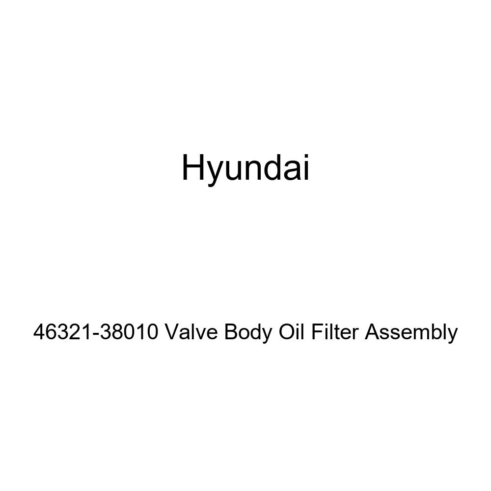 Genuine Hyundai 46321-38010 Valve Body Oil Filter Assembly