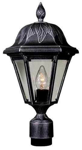 Special Lite Floral Lighting (Special Lite Products Floral F-2940-BLK/BV Medium Post Mount Light, Black)