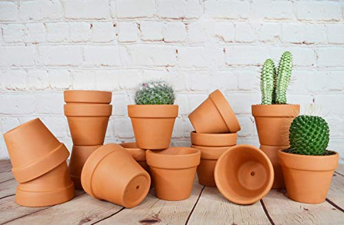 My Urban Crafts 16 Pcs - 2.5 inch Terra Cotta Pots Small Terracotta Pots Mini Flower Pots with Drainage Hole Clay Pots Small Ceramic Pottery Planters Nursery Pot for Cacti Succulent Wedding Favors]()