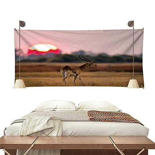 - Anyangeight Dormitory Tapestry Antelope Standing Against The Background of a Large of Sunrise Sun 84W x 70L Inch