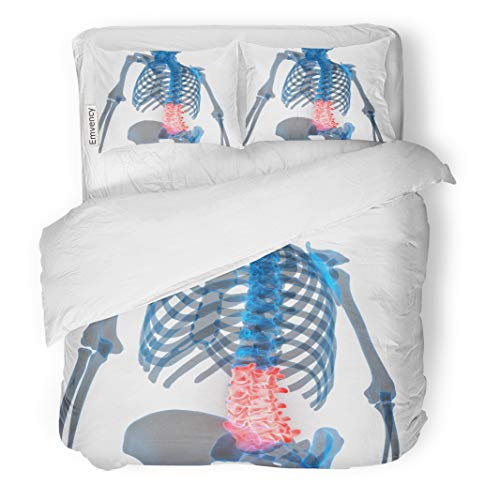 (Semtomn Decor Duvet Cover Set Full/Queen Size Spinal Cord Lumbar Vertebrae Part of Human Skeleton Anatomy 3 Piece Brushed Microfiber Fabric Print Bedding Set Cover)
