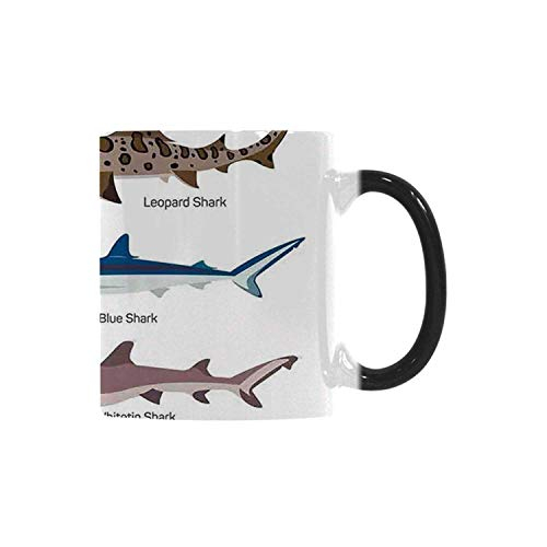 - Sea Animal Decor Utility Morphing Mug,Collection Types of Sharks Bronze Whaler and Piked Dogfish Fox Maritime Design for Home,10.3OZ