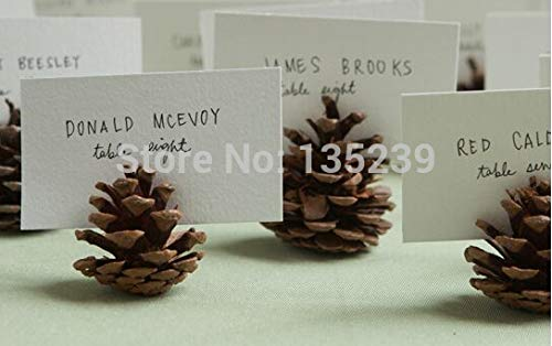 Wedding Pinecone Escort Cards Rustic : Set of 20 Woodland Place Table Numbers Country Fall Winter