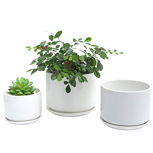 SanDope 6+5+4 inch Glazed Succulent Plant Pots – Cylindrical Ceramic Planters with Connected Saucer, Modern Ceramic…