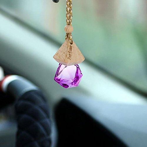 (Ecosin Empty Glass Perfume Bottle Home Car Hanging Air Freshener Perfume Fragrance Diffuser (Purple))