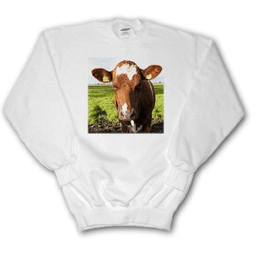 Danita Delimont - Cows - Cow in Edam village dairy, Amsterdam, Netherlands - EU20 BBA0050 - Bill Bachmann - Sweatshirts - Adult SweatShirt 2XL (ss_82259_5)