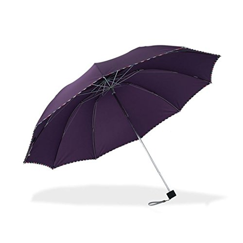 Travel Foldable Umbrella with 10 steel ribs Windproof Compact Lightweight Fast Dry for women and men (navy) (dark purple) by Aviss