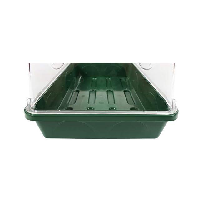 EarlyGrow 93763 Propagador mediano de semillas y hierbas con extensión de altura lateral ventilada, extensor, verde