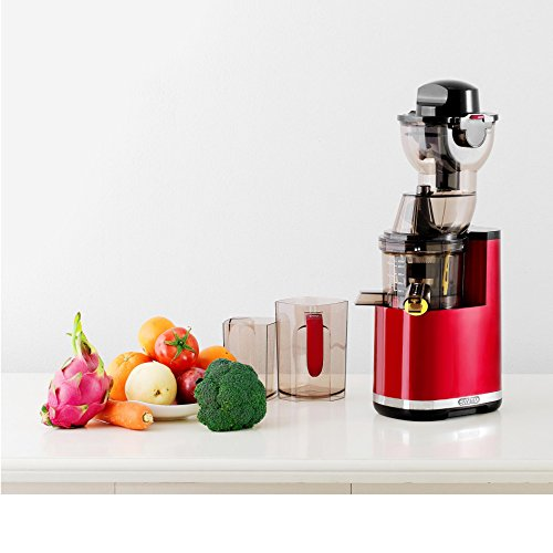 Slow Juicer Savtm : SAvTM JE120-08M00 New Electric Masticating Wide Mouth Whole Chute Anti-Oxidative Fruit and ...