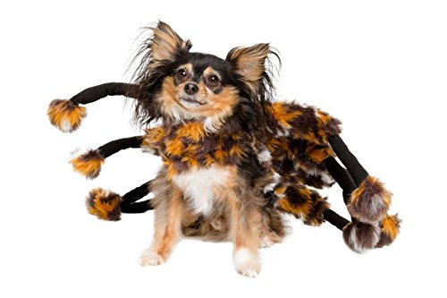 Spider Dog Costume - Cat Costume - Pet Costumes by Pet Krewe by Pet Krewe (Image #1)