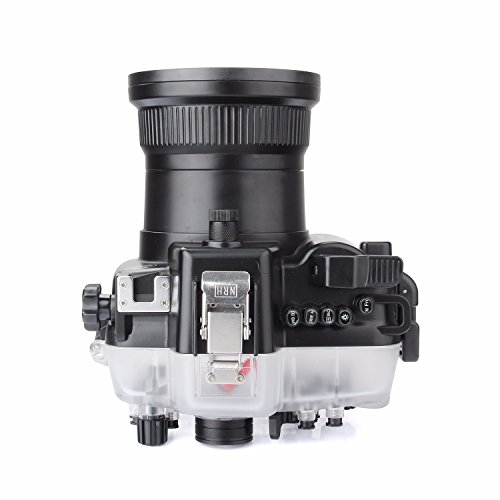 SeaFrogs 40M 130ft Diving Waterproof Housing Case for Canon 5D III IV 5D3 5D4 Supports 24-105mm Lens by SeaFrogs (Image #3)