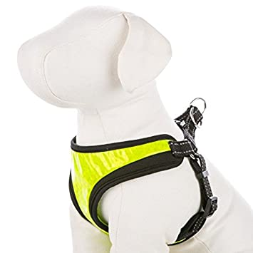 Amazon.com : Top Paw Hi-Visibility Comfort Dog Harness (MED, Yellow