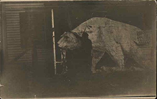 Ringling Brothers Circus Bear Poster on Side of Building Original Vintage Postcard -
