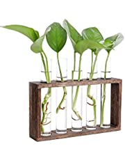 Hyindoor Wall Mounted Hanging Test Tube Vase Desktop Glass Plant Vase Hydroponic Propagation Station with Wooden Stand and 5 Test Tubes Terrariumin Planter for Home Decoration