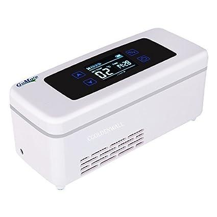 CGOLDENWALL - Nevera térmica de 175 x 56 x 26 mm con termostato de ...