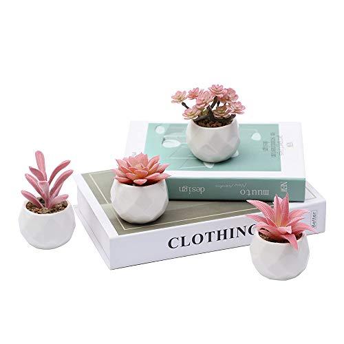 MEET ROSE Set of 4 Small Artificial Succulent Plants with Pot Faux Succulent Plants for Desk Decoration Realistic Fake…