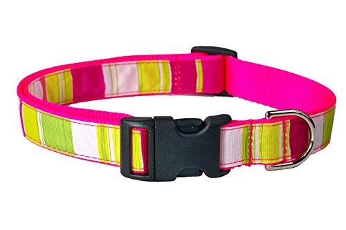 "Sassy Dog Wear 1"" x 18""-28"" Stripe Dog Collar, Large, Neon Pink/Multicolor"