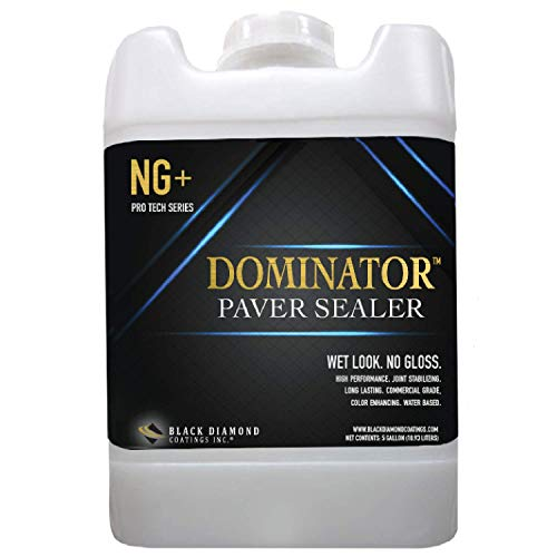 5 Gallon DOMINATOR NG+ Matte Wet Look Paver Sealer and Decorative Concrete - Solvent Free, Twice The Coverage Rate (up to 2,000 sq ft) (Patio Pavers Seal Concrete)