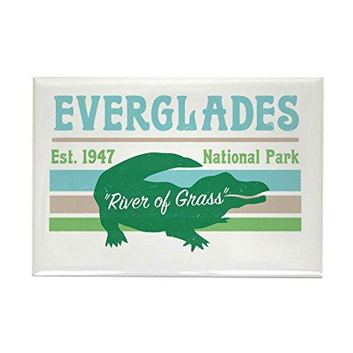 CafePress Everglades National Park Alligator Decal Rectangle Magnet, 2