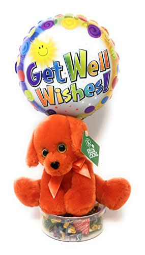 KelliLoon Rainbow Puppy Get Well Bouquet #2009 with Orange Plush Puppy, Balloon and Variety Mix Candy (Get Well Bouquets)