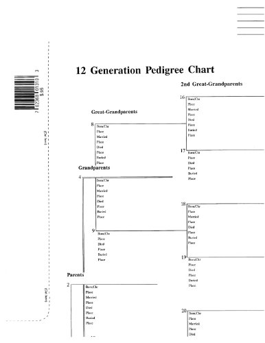amazon com 12 generation pedigree chart 10 pack chart paper
