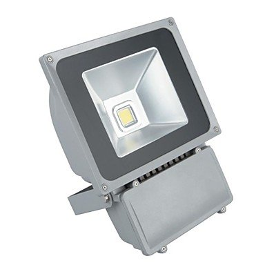 ZQ Character design 100W 8000Lm 2800-3200K IP65 Warm White Projector Light (AC110-220V) , Warm White
