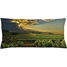 Ambesonne Winery Throw Pillow Cushion Cover, Sunset over the Vineyards of the South of France Sunbeams Cloudscape Picture, Decorative Square Accent Pillow Case, 36 X 16 Inches, Green Yellow Gray