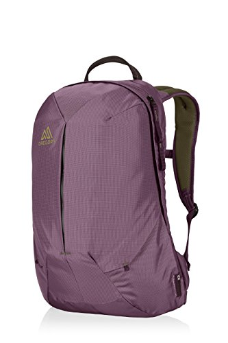 Gregory Mountain Products Sketch 22 Liter Daypack Business, Travel, Commute Dedicated Laptop Compartment, Durable Construction, Built in Organization Options