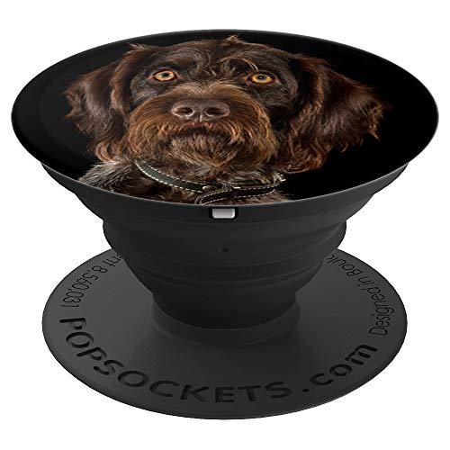German Wirehaired Pointer Phone Grip - PopSockets Grip and Stand for Phones and Tablets