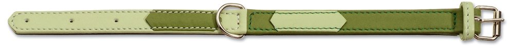 Petego La Cinopelca Soft Calfskin Two color Flat Dog Collar, Green Light Green, 3 4 Inches, Fits 11 Inches to 13 Inches