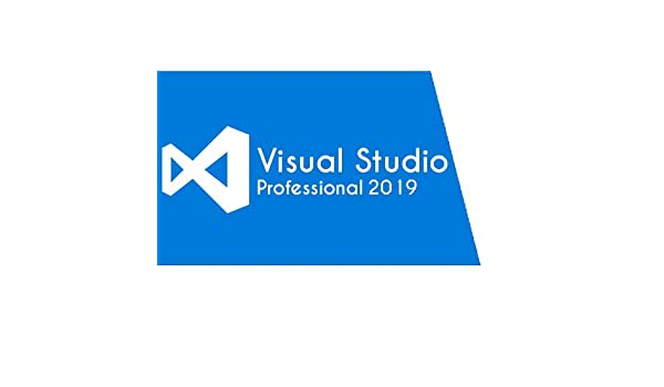 Amazon com: Visual Studio Professional 2019 [PC Download]: Software