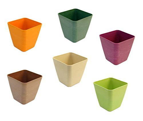 - Set of 6 Tapered Square Mini Planters in Assorted Colors, Made of Bamboo Fiber (ASSORTED)