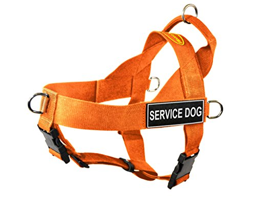 Dean & Tyler DT Universal No Pull Dog Harness with Service Dog Patches, Orange, Medium