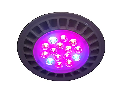 CaliBeams LED Grow Light Bulb - 14 Watts - 3 Bands - 660nm 630nm 450nm