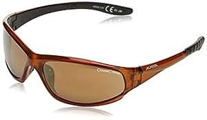 Alpina Wylder - Gafas de sol, color marrón