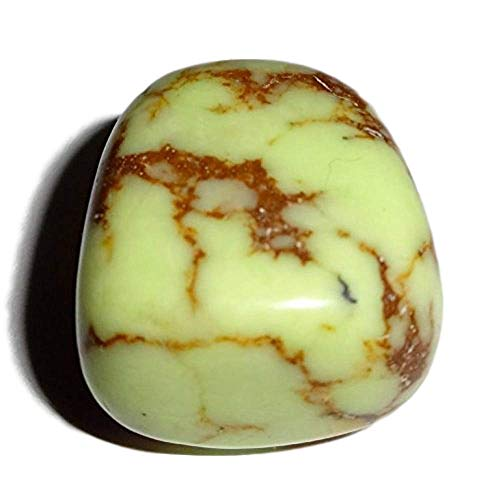 Sublime Gifts 1pc #3 Yellow Dendrite Agate , Tumbled & Hand Polished Natural Wicca and Reiki Healing Crystal Gemstone with beautiful color & markings, collectible , Display or wrapping Stone (Yellow Agate Moss)