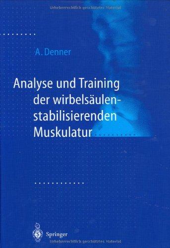 Analyse und Training der wirbelsäulenstabilisierenden Muskulatur