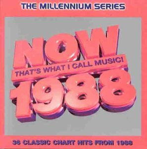 Now that 39 s what i call music 1988 millennium series for Popular music 1988