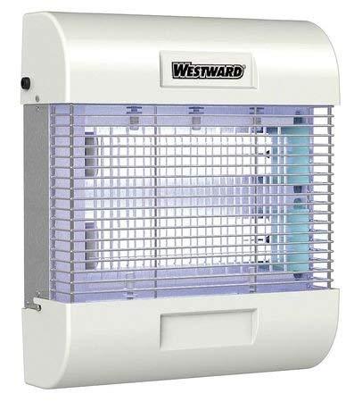 Indoor Insect Killer, 80 Watt